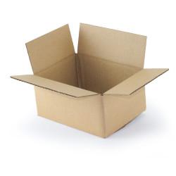 Kartonnen doos enkelgolf 20x15x9 cm