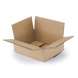 Kartonnen doos enkelgolf 20x15x6 cm